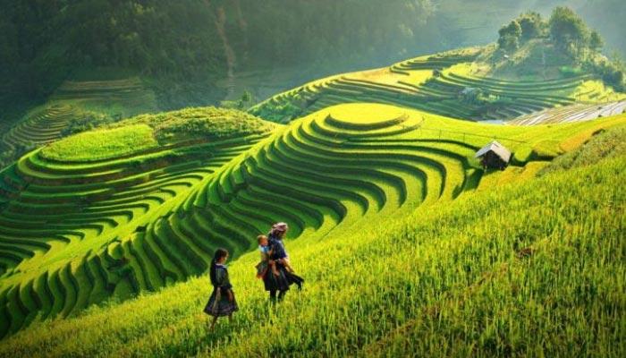Sapa, é uma cidade fronteiriça e capital do distrito de Sa Pa, na província de Lào Cai, no noroeste do Vietnã