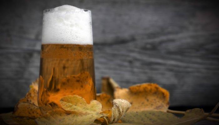 Cerveja-Holandesa