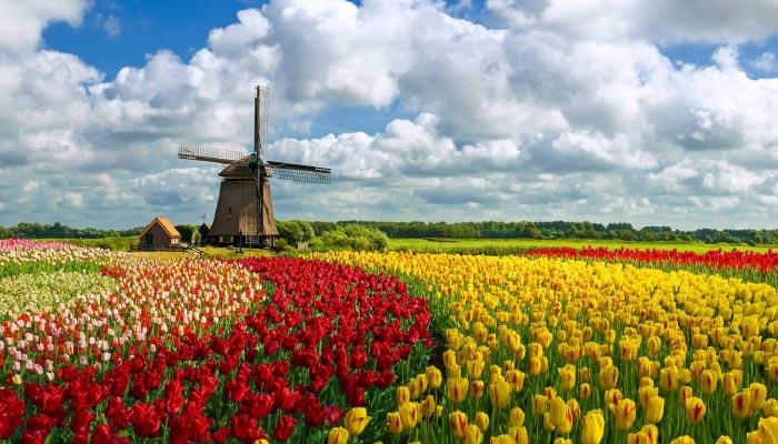 Holanda-