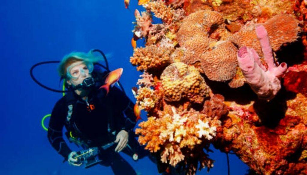 mergulho-no-mar-do-caribe