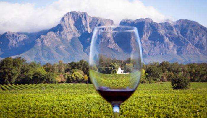 Os-vinhedos-de-Cape-Town