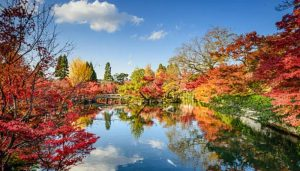Pontos Turísticos do Japão, curiosidades, onde ir e o que fazer!