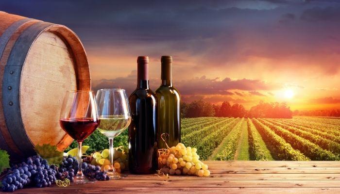 Melhor região de vinhos em Portugal