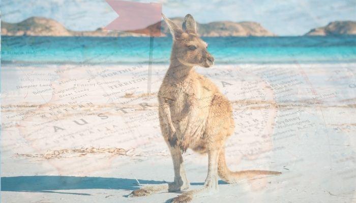 O que vale a pena comprar na Austrália